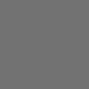 icon-sanitary