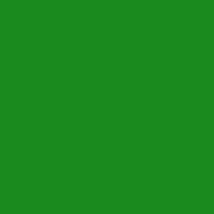 icon_individual